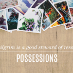 Pilgrim Principles FREE Book Preview: Possessions
