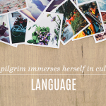 Pilgrim Principles FREE Book Preview: Language