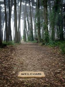 article-new_ehow_images_a07_od_rc_crafts-welcome-signs-800x800