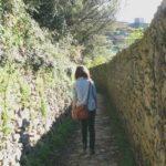The Way Is Made By Walking: How Travel Can Guide You on Your Journey