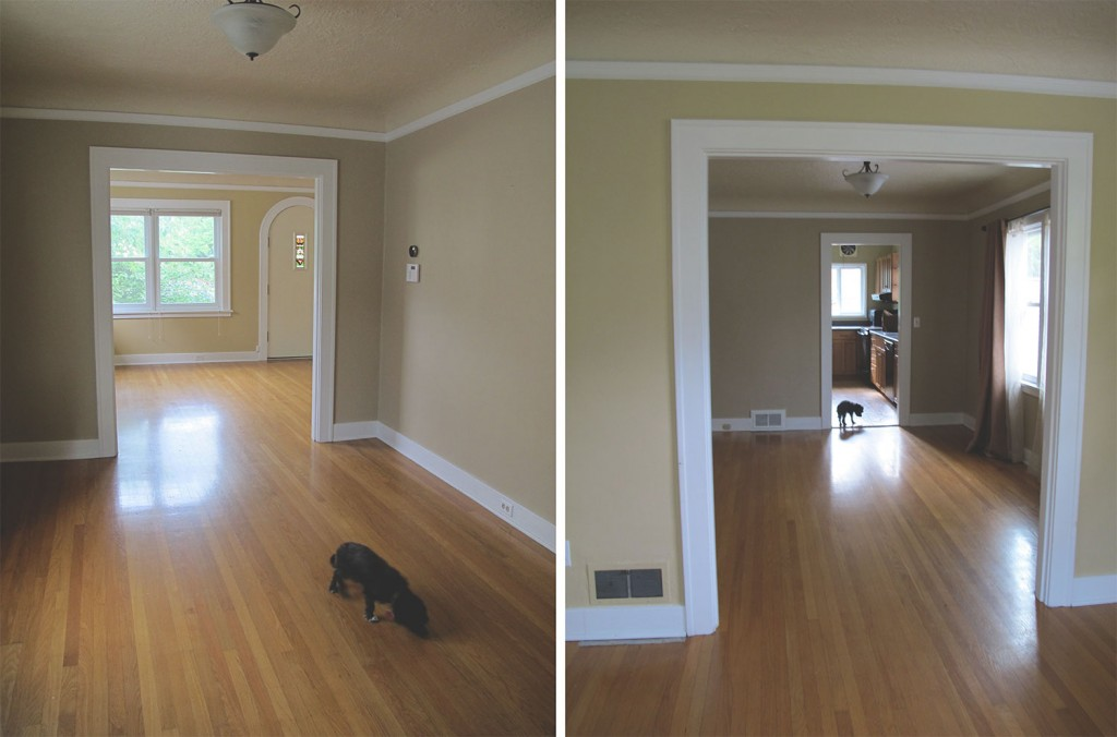 the dining room, with a view of the kitchen in the back and a curious puppy getting acquainted his new home