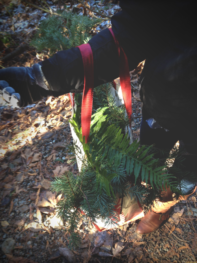 gathering greenery for the hearth