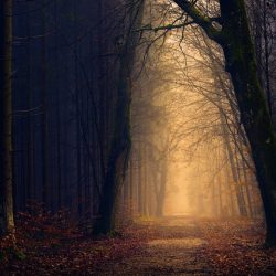 7 Reasons Why Uncertainty is Good for Your Journey
